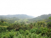 Landschaft in Sipalay